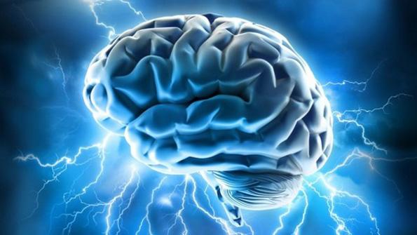 На колку години го достигнувате врвот на вашите когнитивни способности?