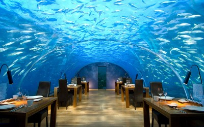 Ithaa Restaurant, Малдиви