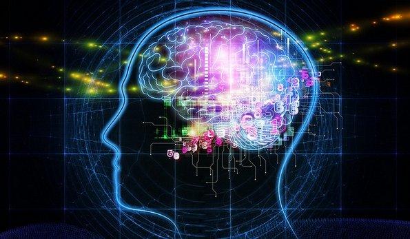 Корисни информации за левата и десната страна на мозокот – која страна ја користите вие и како тоа се одразува на вас?
