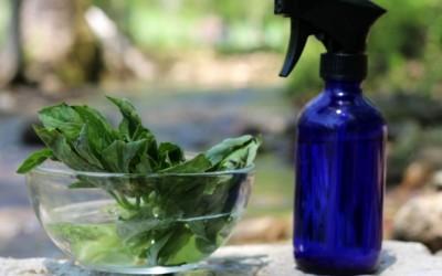 Направете сами: домашен спреј против комарци
