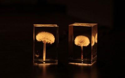 Светлосни глуварчиња кои магично го осветлуваат вашиот дом