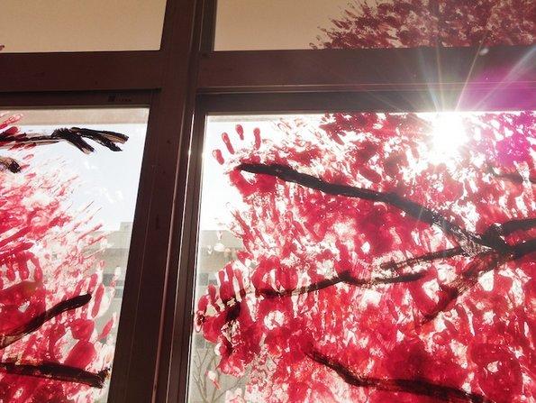 Овој поглед кон расцветано црешово дрво испраќа важна порака