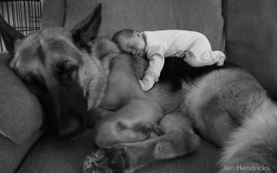 Мали дечиња со своите големи домашни миленичиња