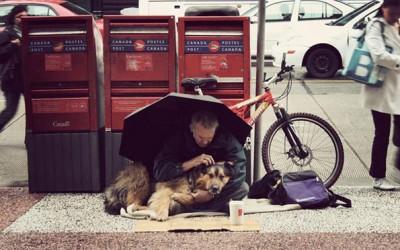 Доказ дека кучињата ќе ве сакаат дури и ако немате пари