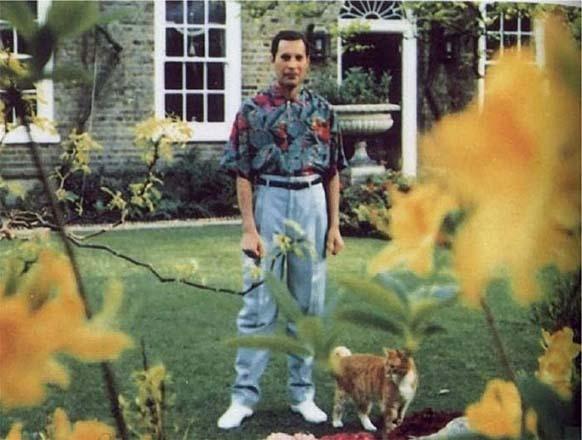 Ова е последната слика на Фреди Меркјури направена во 1991 година, пред да почине од бронхијална пневмонија како резултат на СИДА.