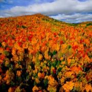 Прекрасни есенски фотографии кои ќе ве натераат да почнете да сликате