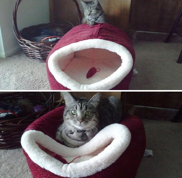 Како мислиш да спијам внатре?