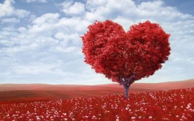 Тест: Што ве очекува во љубовта?