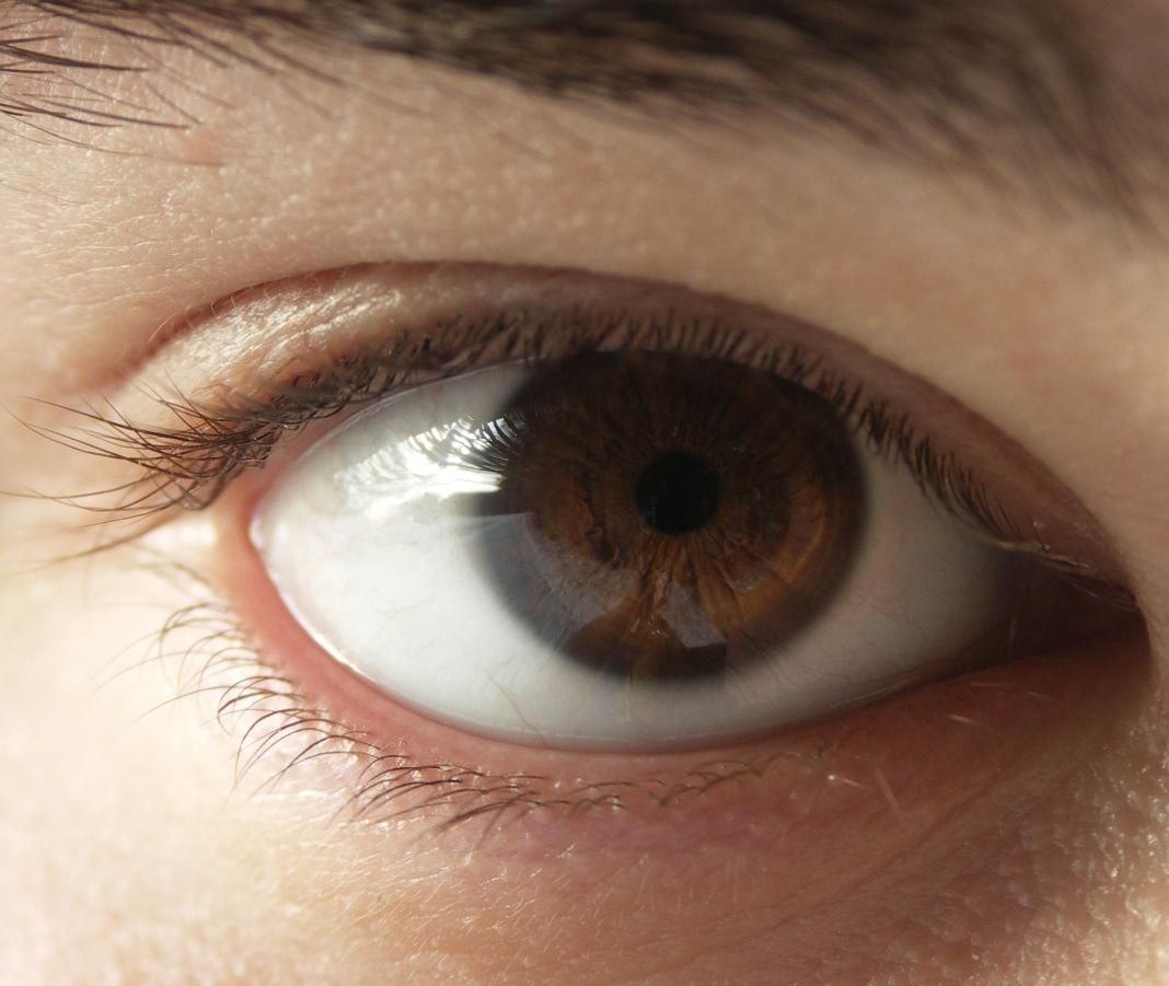 10 неверојатни факти за вашите очи кои сигурно не сте ги знаеле