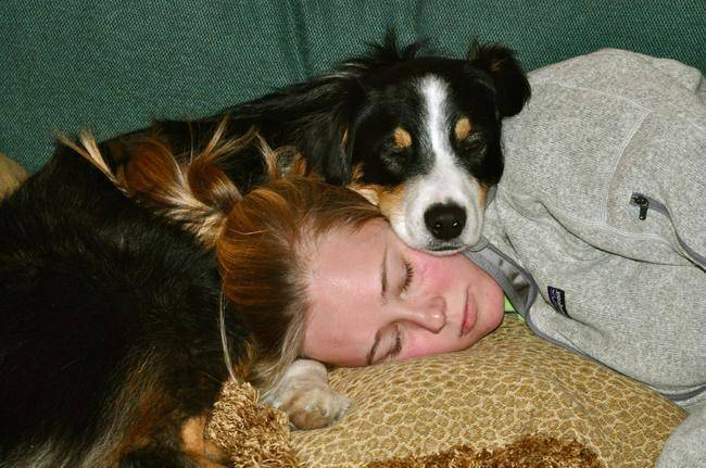 (1) 25 животни кои ја совладале техниката на прегрнување додека спијат
