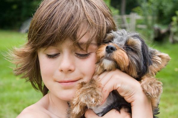 (12) 15 нешта кои секој човек може да ги научи од кучињата
