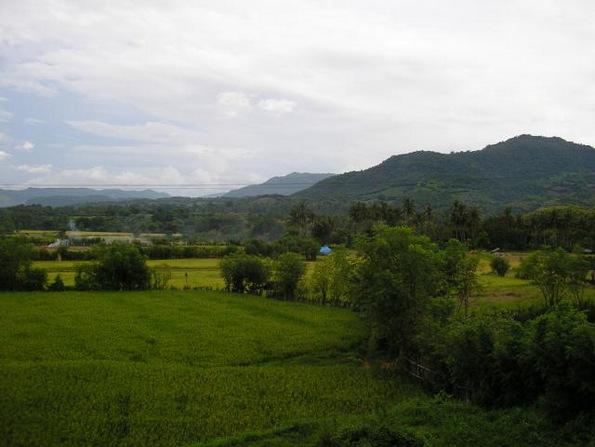 (5) Би го посетиле ли проколнатиот остров Сумбава во Индонезија?