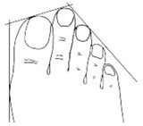(2) Обликот на прстите на нозете може да ви каже многу за вашиот карактер