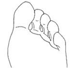 (4) Обликот на прстите на нозете може да ви каже многу за вашиот карактер