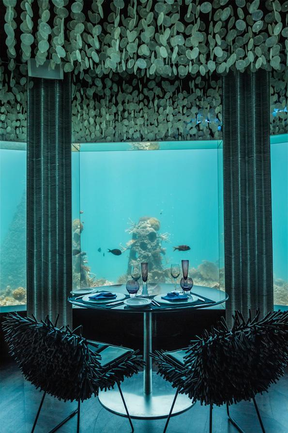 (3) Во овој неверојатен подводен ресторан можете да вечерате покрај морскиот свет