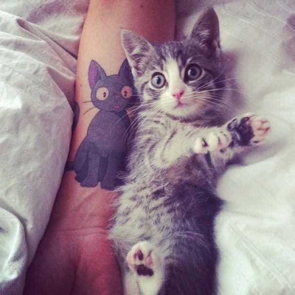 1-prekrasni-tetovazhi-koi-bi-mu-se-dopadnale-na-sekoj-ljubitel-na-machkite-kafepauza.mk