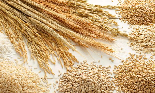 3-ova-se-4-te-najzdravi-dieti-promenete-gi-navikite-vo-ishranata-i-kje-oslabete-www.kafepauza.mk_