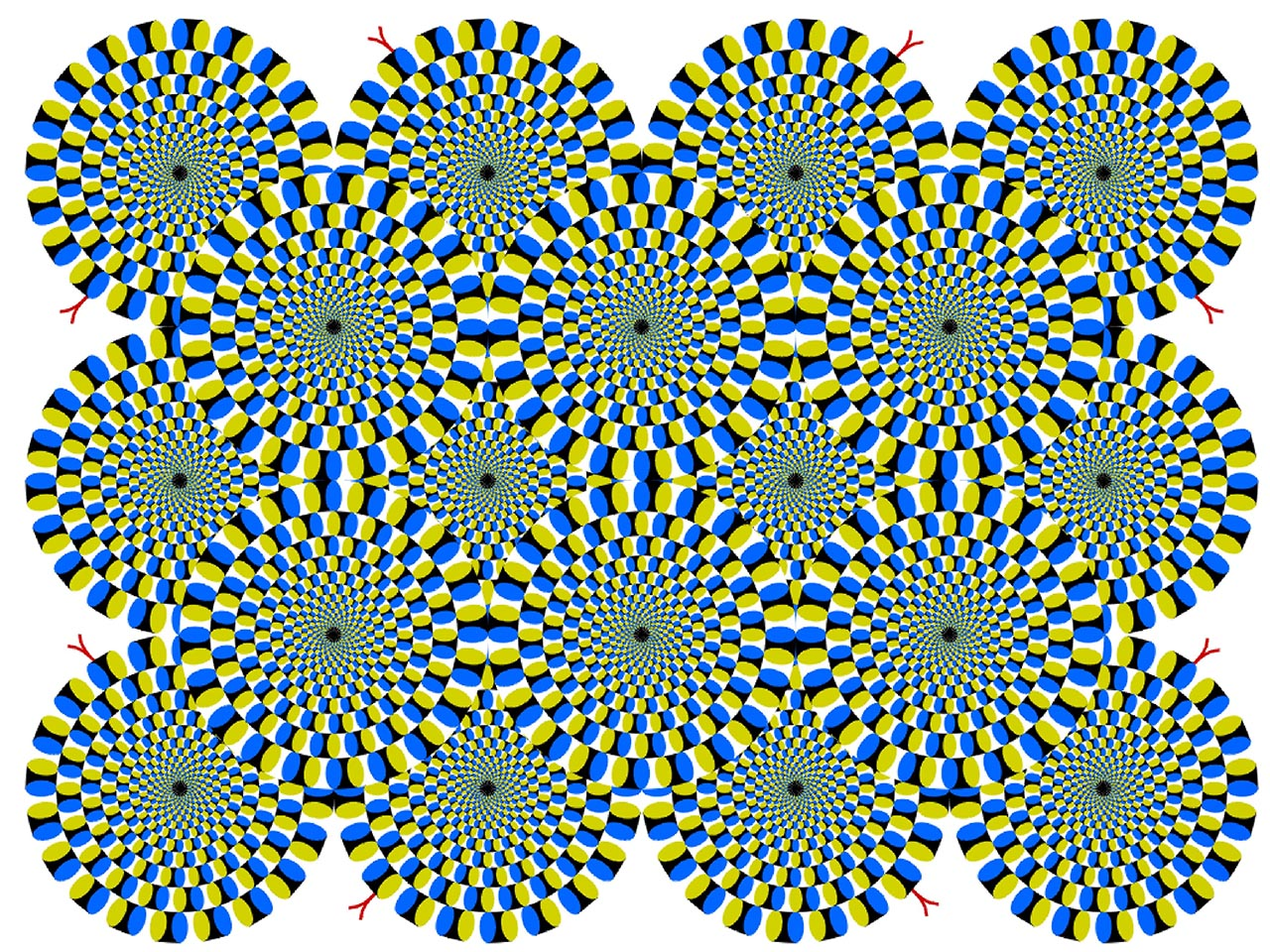 **MANDATORY BYLINE** PIC BY AKIYOSHI KITAOKA / CATERS NEWS (PICTURED: ROTATING SNAKES - CIRCULAR SNAKES APPEAR TO ROTATE SPONTANEOUSLY) - These are the mind-blowing artworks of one professor who has dedicated his professional life to studying and generating a series of dizzying optical illusions. Professor Akiyoshi Kitaoka, from Ritsumseikan University, in Kyoto, Japan, has spent more than a decade creating his collecting of stomach-churning works. His designs have been used by the likes of Lady Gaga, who ran the Kitaokas work, entitled Gangaze, as the CD cover for her album Art Pop, in 2013.SEE CATERS COPY