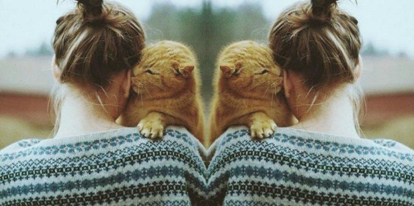 12 причини зошто жените кои чуваат мачки се најдобри сопруги
