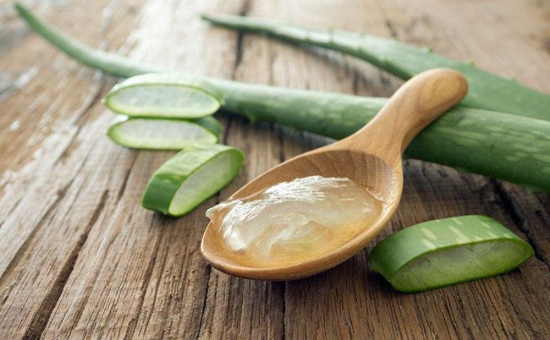 Алое Вера: Растението кое лечи преку 50 болести и здравствени нарушувања