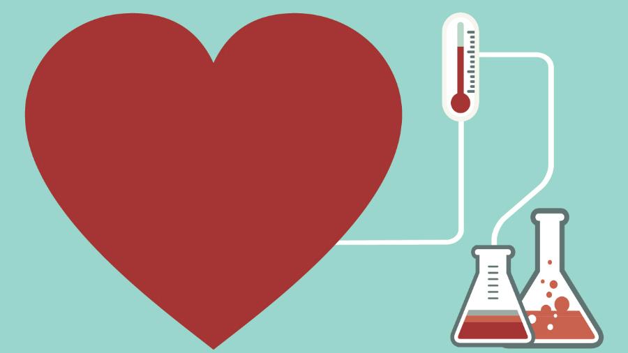 Науката за љубовта и поврзувањето: 3-те фази на заљубувањето