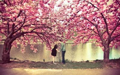 Зошто пролетта е совршеното годишно време за да влезете во врска?