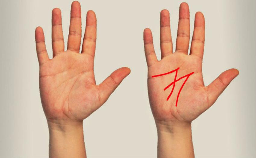 Дознајте за што служат линиите на вашата дланка