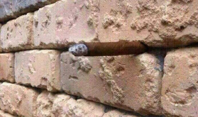 (3) Оптичка илузија со ѕид од цигли која ги полуди сите луѓе ширум светот