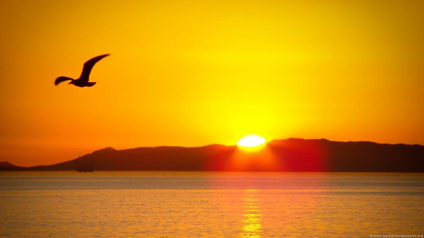 (1) Кога е најтемно, пронајдете ја светлината во вас
