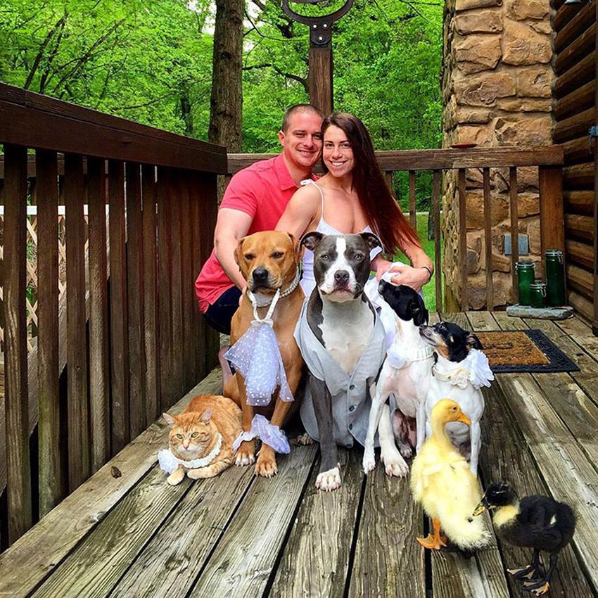 (14) Инспиративно семејство: 4 кучиња, 1 мачка, 2 патки и брачен пар кој очекува бебе