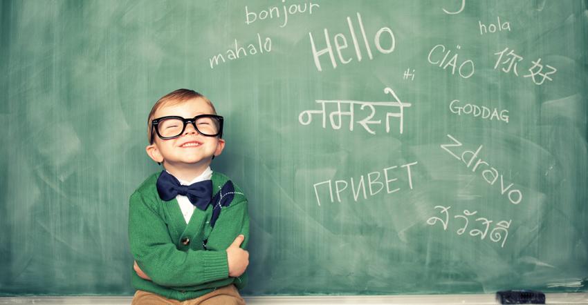 Науката открива: Учењето нов јазик ќе ве направи попаметни