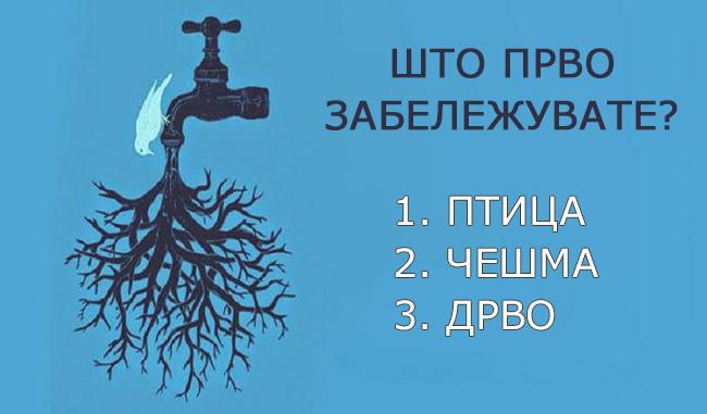 sakate-da-otkriete-shto-krie-vashata-potsvest-vo-ovoj-moment-ovoj-test-kje-vi-gi-dade-potrebnite-odgovori-kafepauza.mk