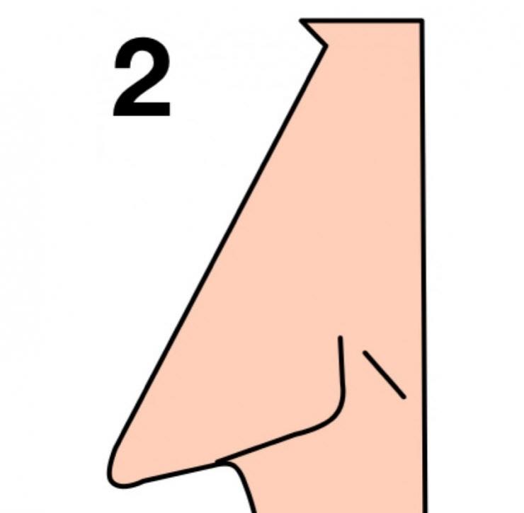 (2) Обликот на вашиот нос зборува многу нешта за вашиот карактер!