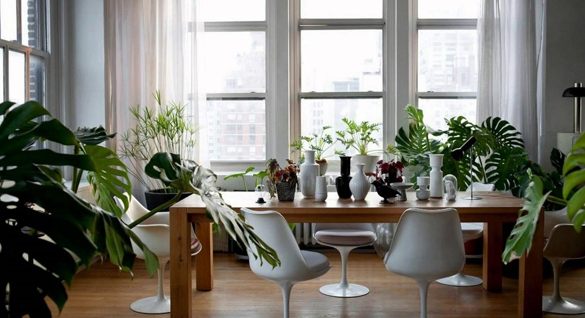 Со помош на овие работи привлечете пари и добра енергија во вашата куќа