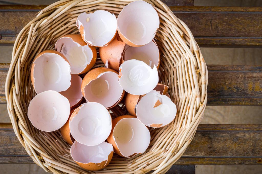 1-6-upotrebi-na-lushpite-od-jajca-na-koi-nikogash-ne-bi-se-setile-www.kafepauza.mk_