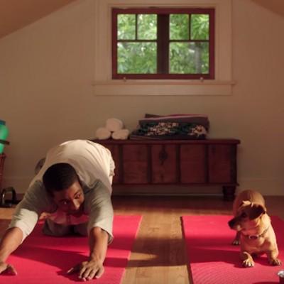 Како изгледа кога вие и вашето куче се подготвувате да го започнете денот на истиот начин?