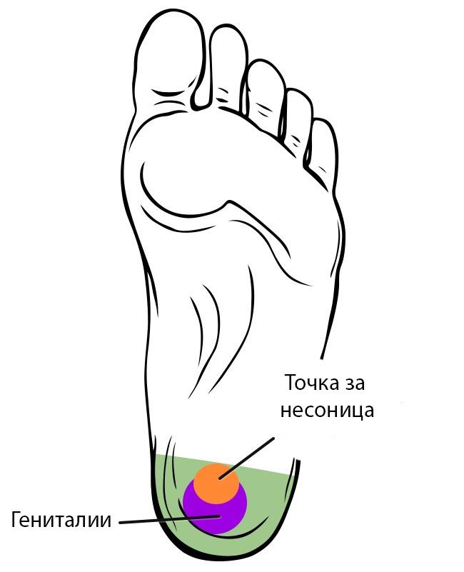 (6)tochki-na-vashite-stapala-koi-mozhete-da-gi-masirate-i-da-go-podobrite-vasheto-zdravje-kafepauza.mk