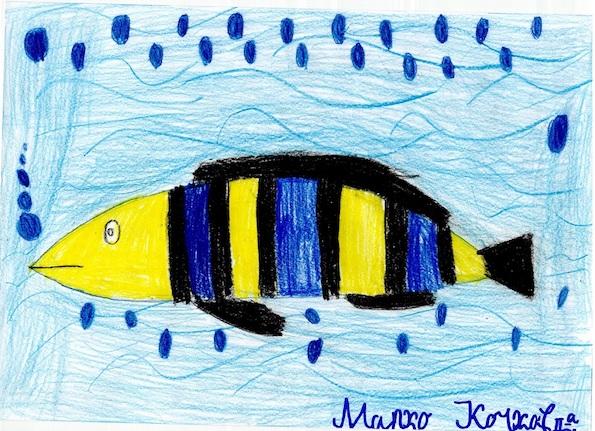 Втора награда: Марко Кочков - 8 години, Скопје
