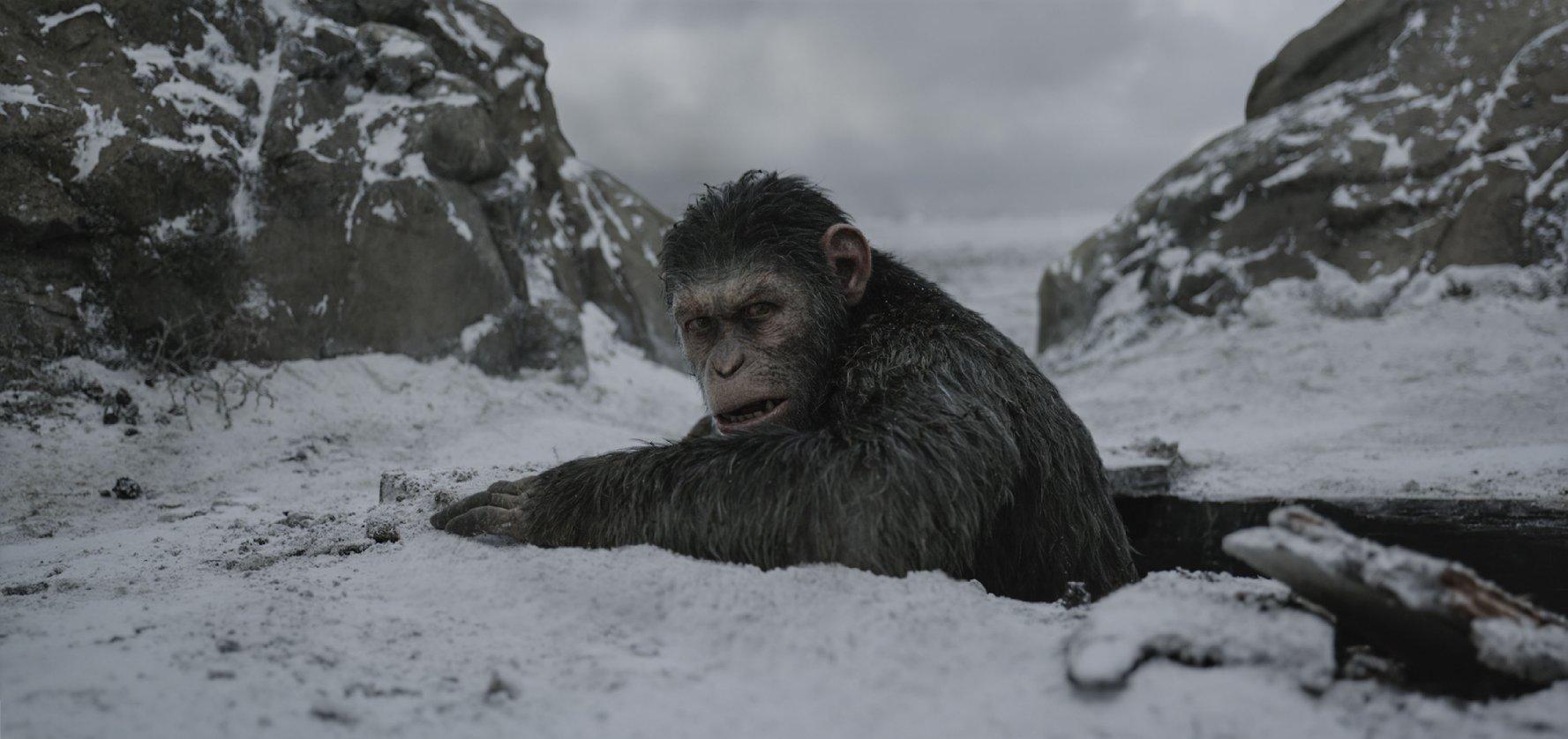 (3) film-vojna-za-planetata-na-majmunite-war-for-the-planet-of-the-apes-www.kafepauza.mk