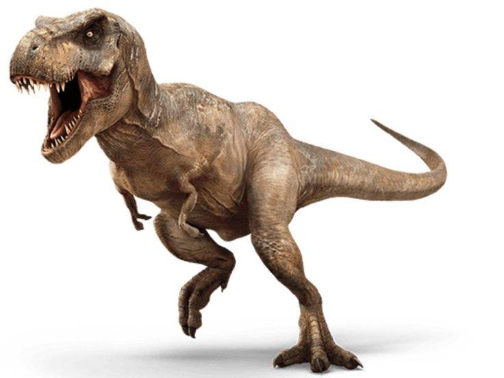 (3)13-mitovi-za-dinosaurusite-koi-ne-se-tochni-kafepauza.mk