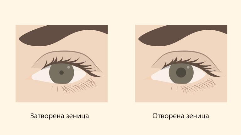 (1)suptilni-gestovi-so-koi-kje-gi-naterate-drugite-da-vi-veruvaat-kafepauza.mk