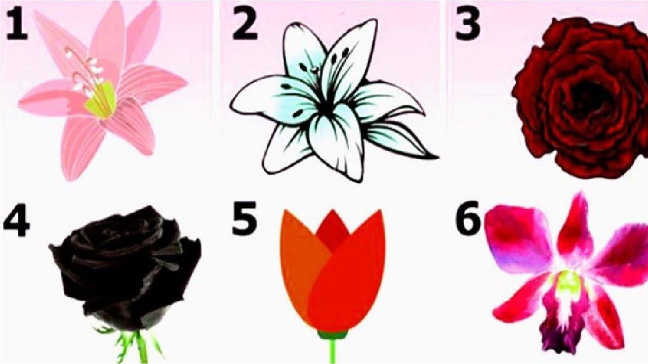 1-odverete-go-najvpechatliviot-cvet-spored-vas-i-doznajte-interesna-tajna-za-vashiot-karakter-www.kafepauza.mk_