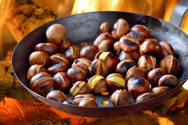 2-kostenite-lekuvaat-duri-13-bolesti-plod-koj-go-chuva-srceto-i-bubrezite-poln-so-magnezium-i-vitamin-www.kafepauza.mk_