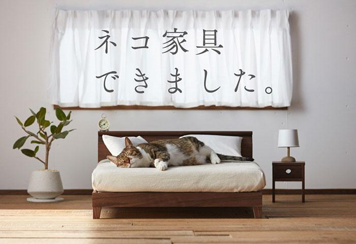 (3)minijaturna-pokukjnina-za-machki-od-japonija-kafepauza.mk