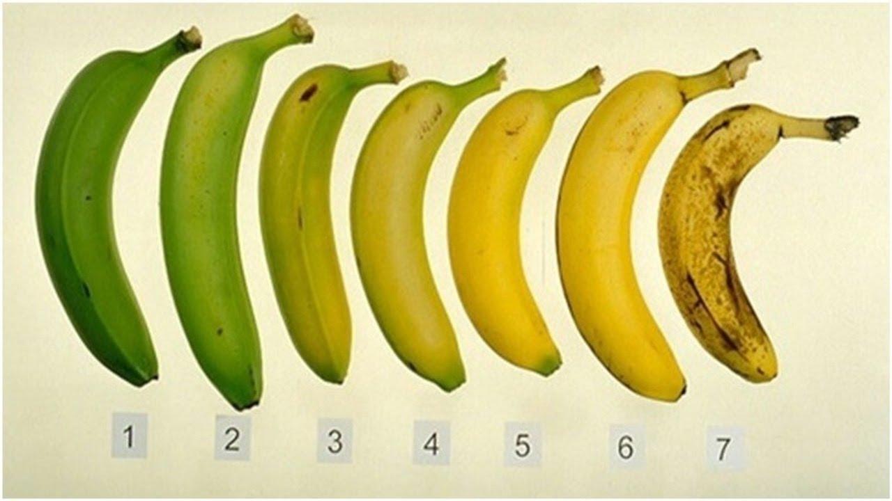 1-koja-od-ovie-banani-bi-ja-izele-vasheto-zdravje-zavisi-od-odgovorot-www.kafepauza.mk_