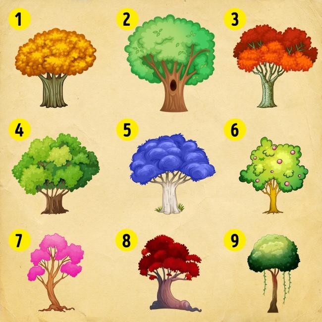 1-izberete-drvo-i-doznajte-shto-kje-dozhiveete-vo-2018-ta-godina-www.kafepauza.mk_ - Copy