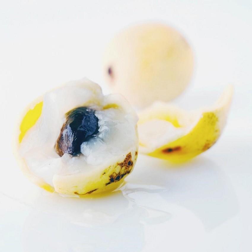 2-maslo-od-marula-idealno-reshenie-za-suvata-kozha-www.kafepauza.mk_