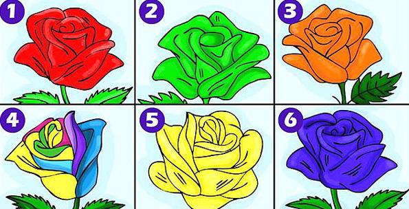 Одлична анализа: Одберете ја најубавата роза и откријте ги длабоките тајни на вашиот карактер