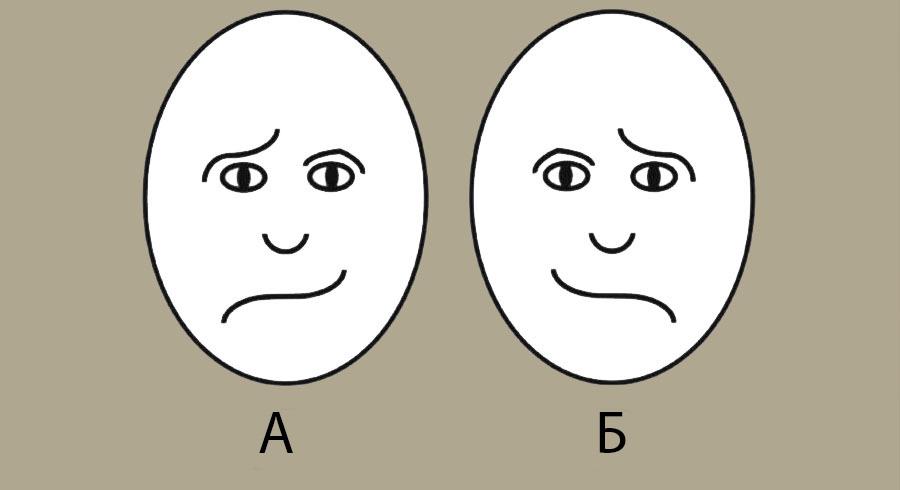 koe-lice-izgleda-posrekjno-odgovorot-otkriva-kako-raboti-vashiot-mozok-www.kafepauza.mk_
