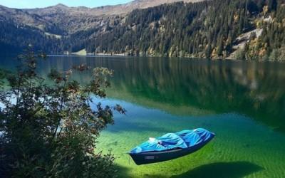 15 интересни факти за магичниот Нов Зеланд